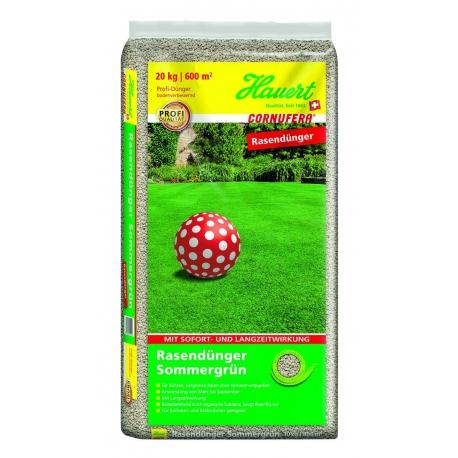 Rasendünger Sommergrün 20kg