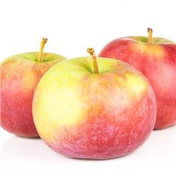 Apfel 'James Grieve'