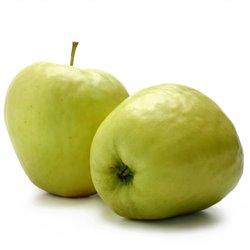 Apfel 'Glockenapfel' Busch C7,5