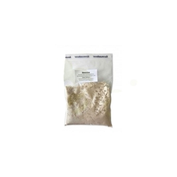 Nematon - Nematoden gegen Dickmaulrüsslerlarven [5 Mio.]
