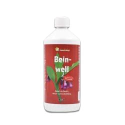 Beinwell Extrakt - Konzentrat 1000ml, spritzen, gießen