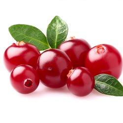 BIO Cranberry 'Red Star' 2l