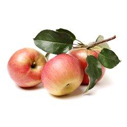 Apfel 'Ilzer Rosenapfel' Busch C7,5