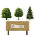 Haus- und Parkbäume