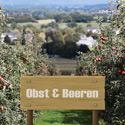 Obst & Beeren