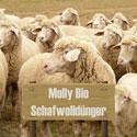 Molly BIO Schafwolldünger