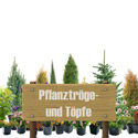 Pflanztröge - Töpfe