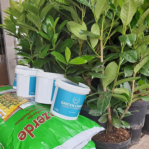 GartenGarrten Bilder von Kunden