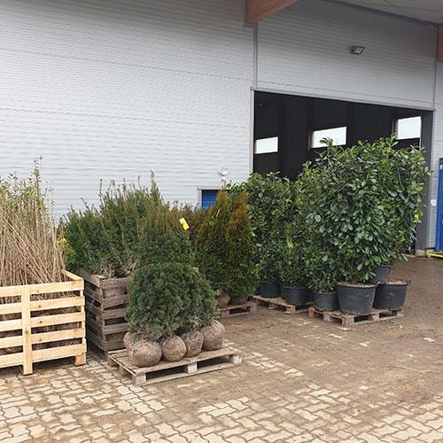 GartenGarten Produktion Steiermark